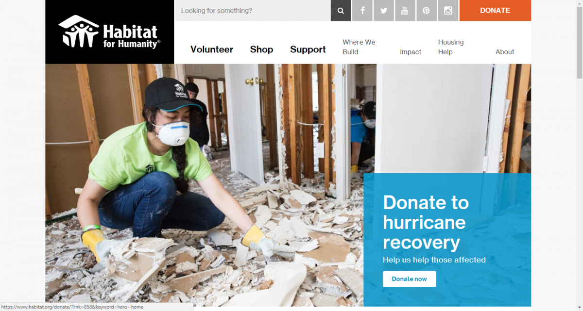 Habitat For Humanity Donate Call To Action Sample
