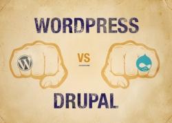 Drupal vs. Wordpress - Questions to ask